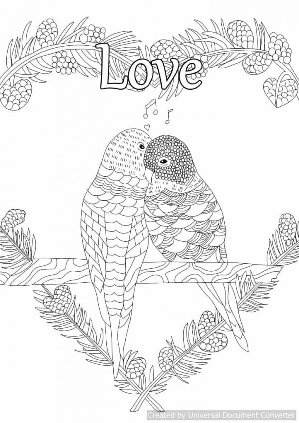 Mindfulness colouring with affirmations created for you to find peace, calm & positivity in your household.